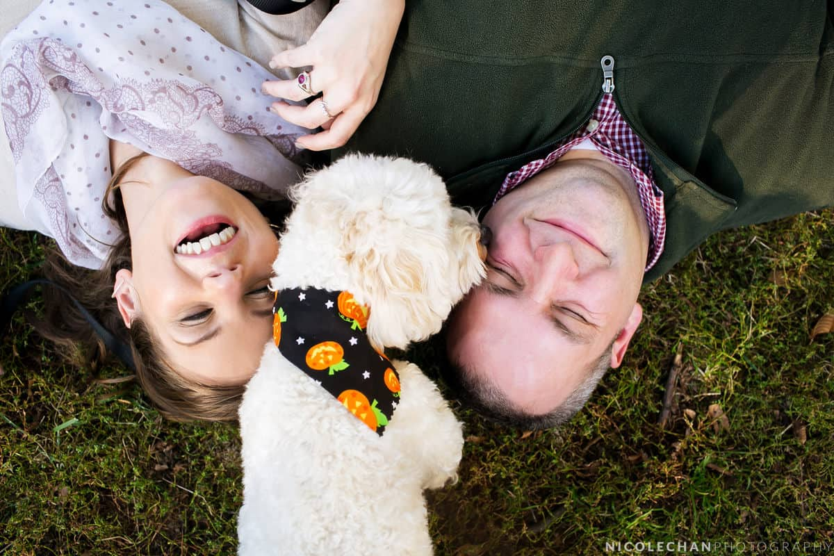 molly-matt-003-brattle-bookstore-boston-massachusetts-wedding-photographer-nicole-chan