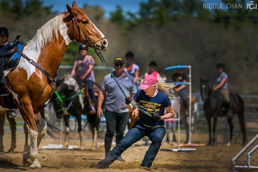 de-spook-horse-clinic_00381