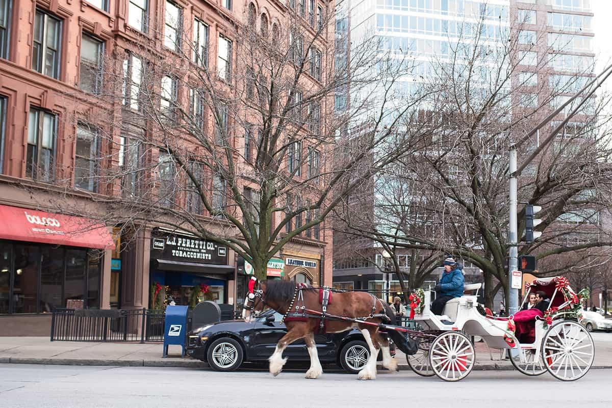boston-proposal-photographer-boston-common-boston-public-gardens-nicole-chan-photography-0016