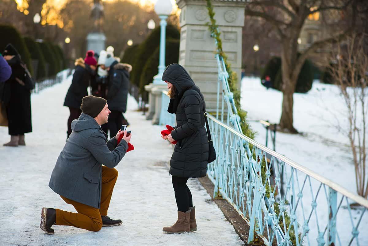 boston-public-garden-bridge-proposal-boston-common-proposal-photography-nicole-chan-photography-0001