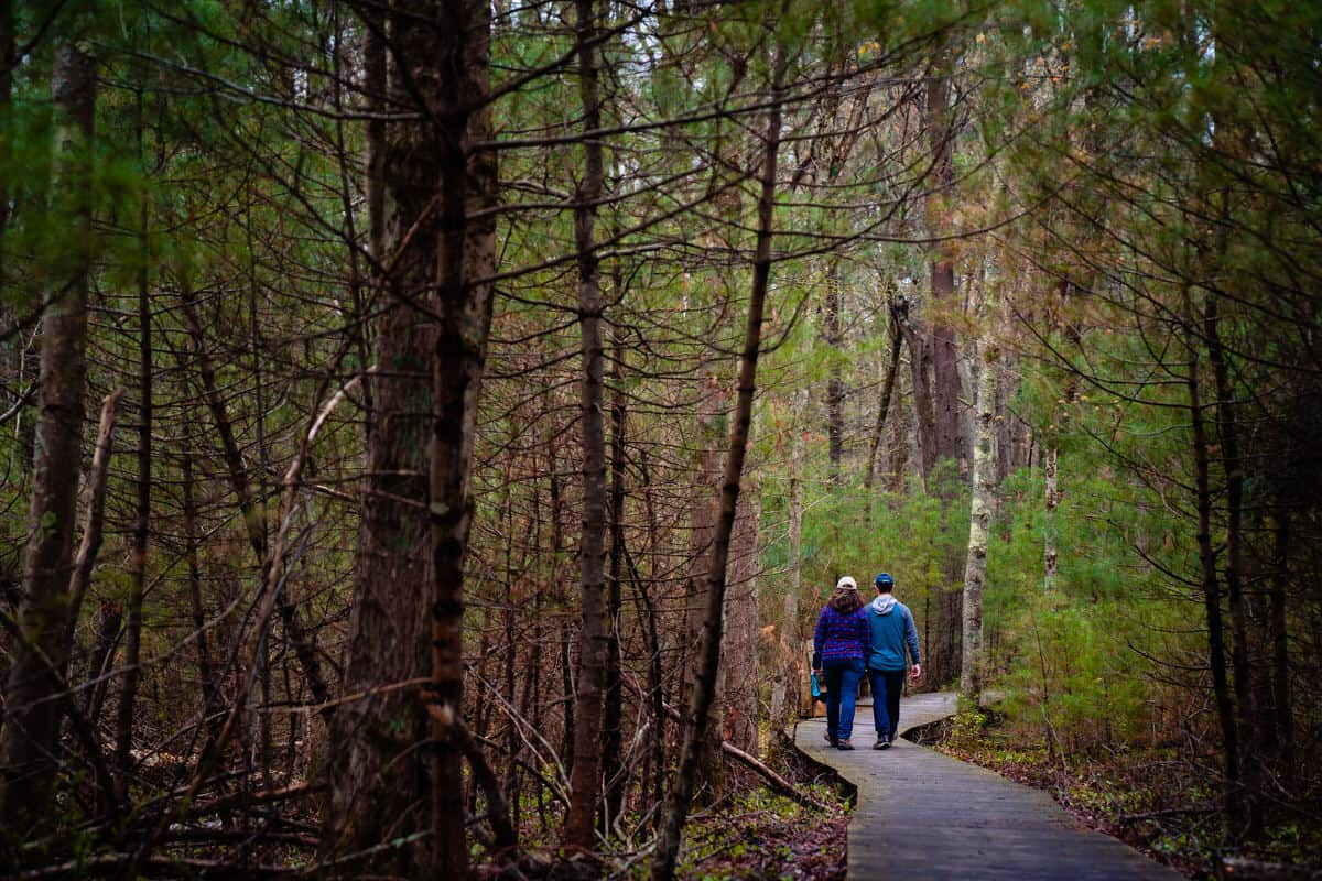 Moose Hill Wildlife Sanctuary wedding photo by Boston Wedding Photographer Nicole Chan