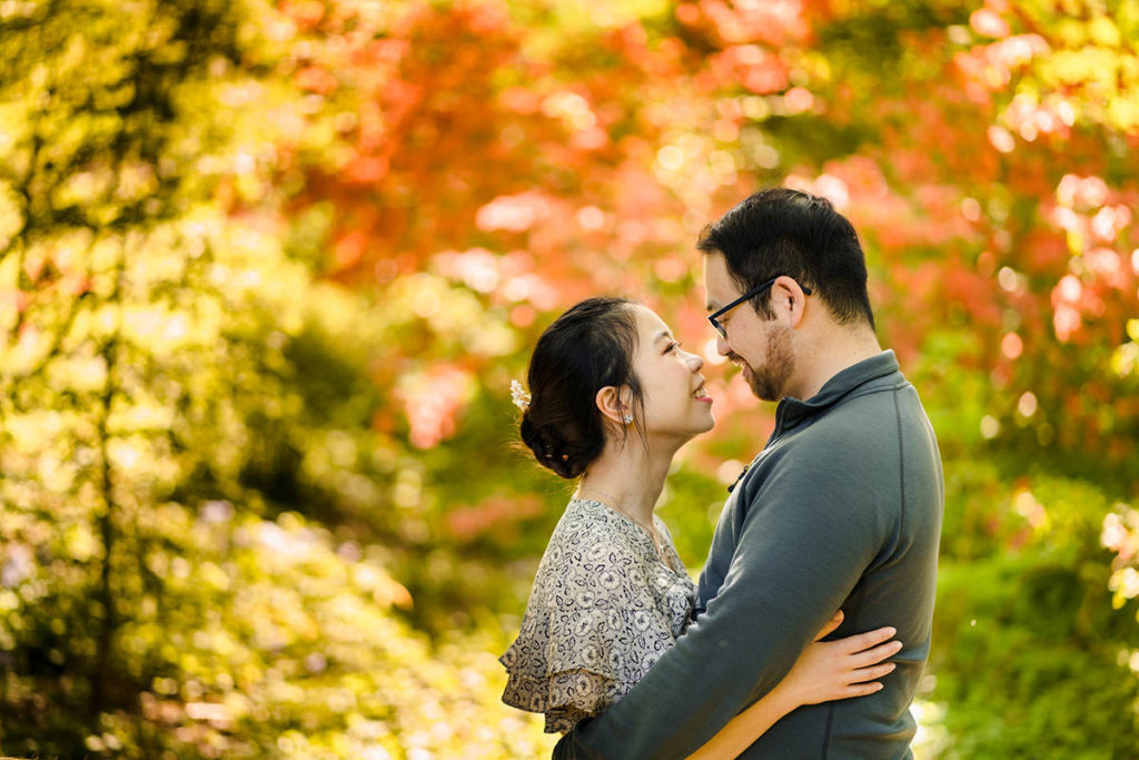 Engagement session at Arnold Arboretum with orange and yellow foliage leaves